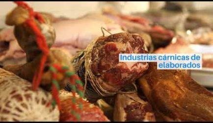 Vídeo sobre los puestos de trabajo y el sueldo que gana un titulado de Elaborador de Productos Cárnicos