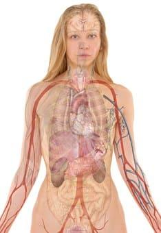 FP Anatomía Patológica y Citología