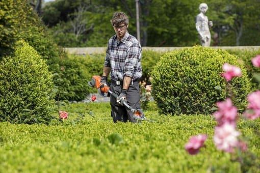 FP Grado Medio en Jardinería y Floristería